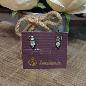 Premier Designs earrings